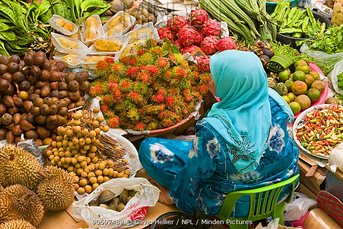 Women selling fruit and vegetables in the towns central market, Kota Bharu, Kelantan State, Malaysia 2008  -  Gavin Hellier/ npl