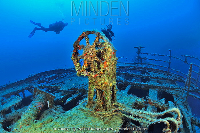 Divers by steering wheel of the Imperial Eagle wreck, a ferry sunk in 1999 in Qawra Point as an artificial reef, Malta, Mediterranean Sea. June 2014.
