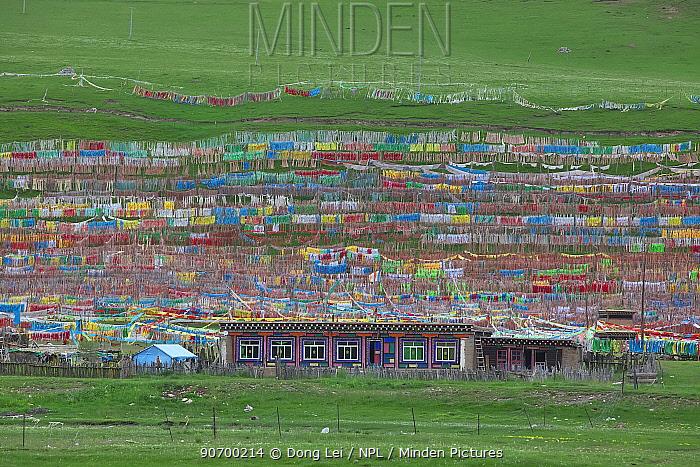 Buddhist prayer flags surrounding colourful building, Serxu, Shiqu county, Sichuan Province, Qinghai-Tibet Plateau, China.