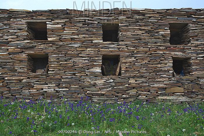 Tibetan artwork, and wall which includes Mani stones. Serxu, Shiqu county, Sichuan Province, Qinghai-Tibet Plateau, China. August 2010