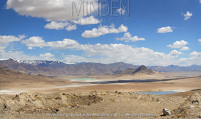 Desert landscape with lakes in Pamir's Plateau at 4000m,  Pamir Mountains, Tajikistan. June 2014.