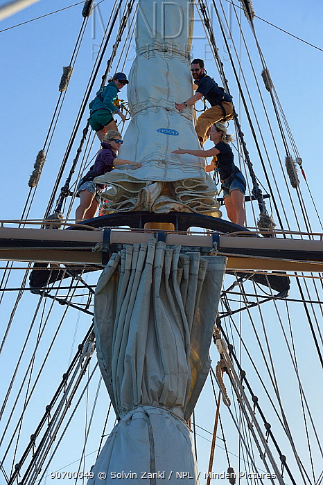 Crew attending to sails on mast of a sailing boat, Sargasso Sea, Bermuda