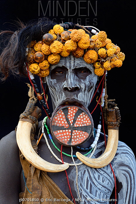 Portrait of woman from the Mursi tribe, traditionally decorated and painted, wearing a large clay lip plate, Omo Valley, Ethiopia, March 2015.