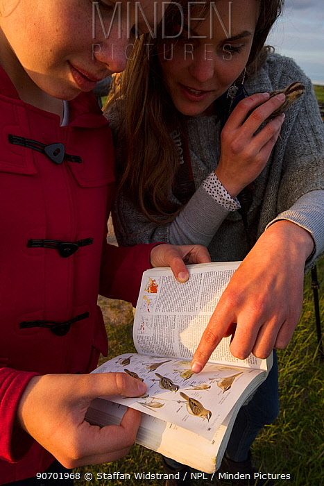 Rita Norvaisaite, from the Baltic Environmental Forum, helping a young girl identify bird, during a bird festival in the Nemunas River Delta, Lithuania, May 2015.