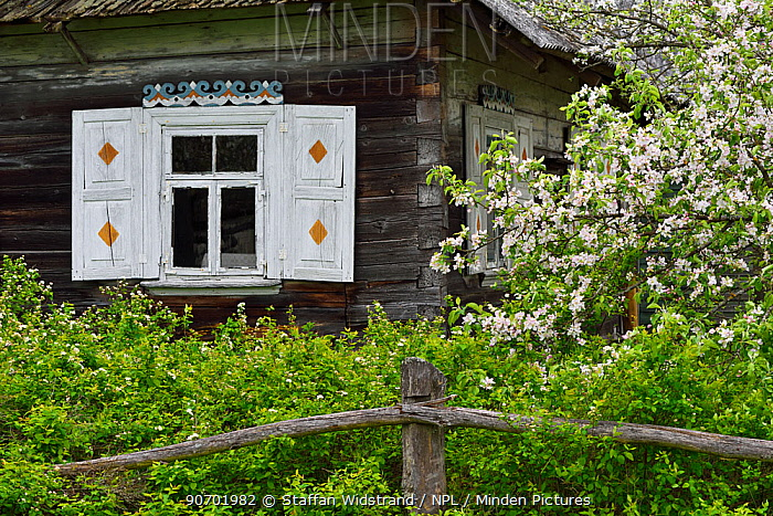House in Musteika Village, Lithuania, May 2015.