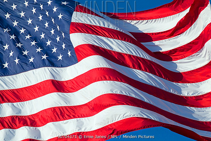 Stars and stripes national flag of the United States of America blowing  in the wind.