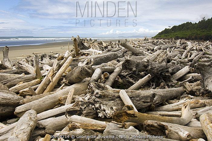 Driftwood washed up on beach at Olympic National Park, Washington, USA, June 2006