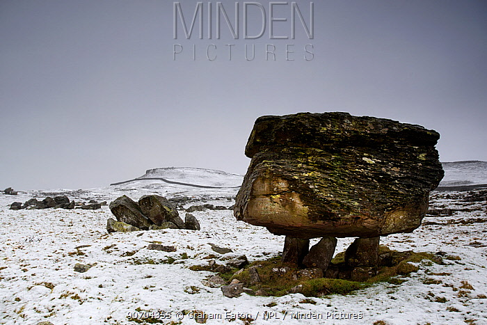 The Norber Erratics. Blocks of older Silurian sandstone, perched on top of younger Carboniferous limestone, that were left by retreating ice at the end of the last Ice Age, Clapham, Yorkshire