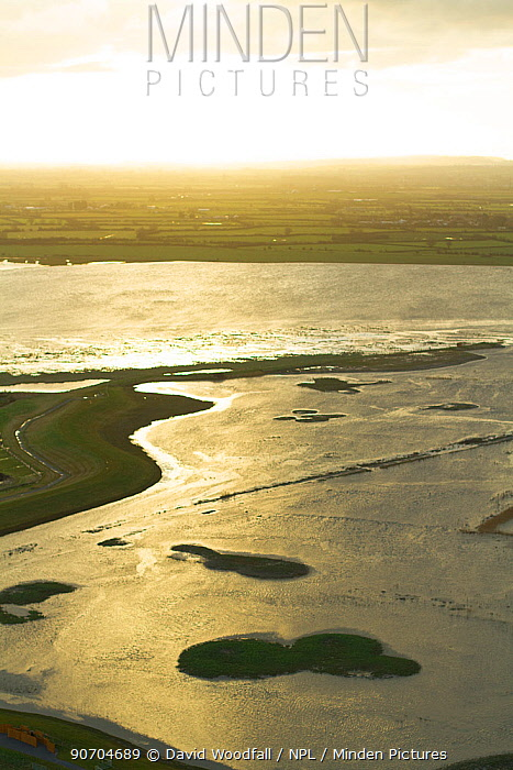 Aerial view of Steart Marshes Wildfowl and Wetland Trust, agricultural land transformed into wetland reserve, at sunrise, Somerset, UK, February 2015.  This area has been allowed to flood by the WWT and the Environment Agency to create new salt marsh habitat and is an example of managed retreat.