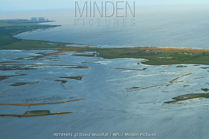 Aerial view of Steart Marshes Wildfowl and Wetland Trust Nature Reserve with Hinkley Point nuclear power station in background, Somerset, UK, February 2015. This area has been allowed to flood by the WWT and the Environment Agency to create new salt marsh habitat and is an example of managed retreat.
