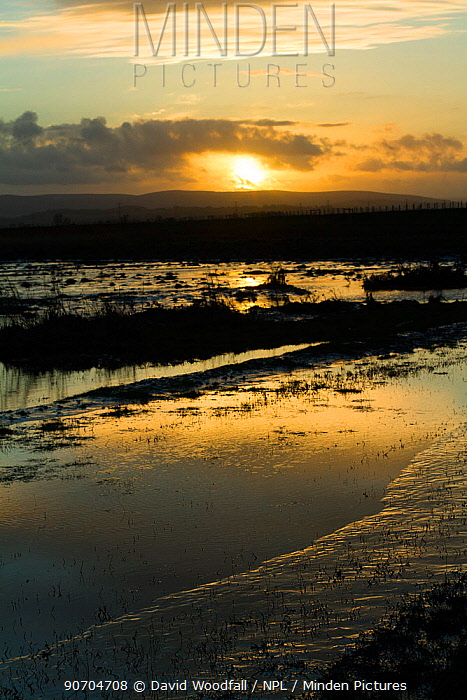 Sunset over Steart Marshes Wildfowl and Wetland Trust Nature Reserve, agricultural land transformed into wetland reserve, Somerset, UK, February 2015.  This area has been allowed to flood by the WWT and the Environment Agency to create new salt marsh habitat and is an example of managed retreat.