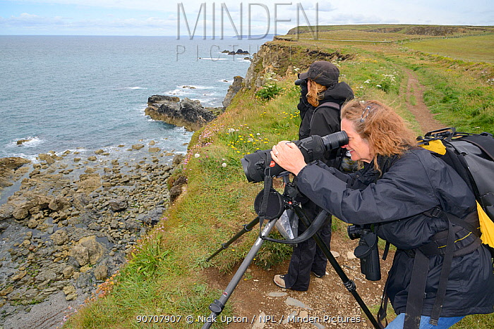 Sue Sayer and Kate Hockley of the Cornwall Seal Group watching Grey seals (Halichoerus grypus) from a cliff top to identify the seals. Cornwall, UK, June.