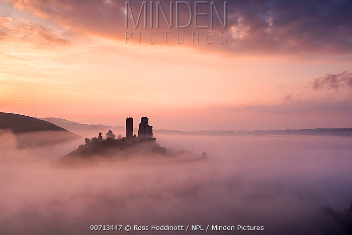 Corfe castle and village at dawn with mist, Corfe Castle, The Purbecks, Dorset, UK. September 2014.