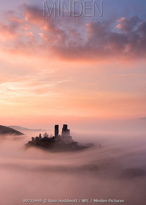 Corfe Castle at dawn with mist, Corfe Castle, Dorset, UK. September 2014.