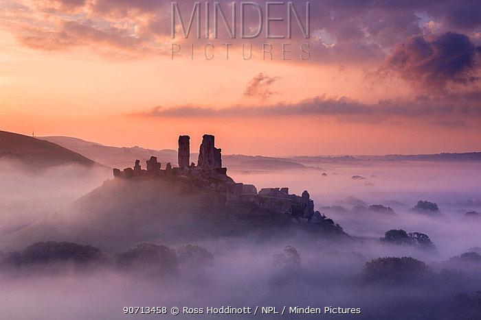 Corfe Castle, early morning llight and mist, Corfe Castle, Dorset, UK. September 2014.