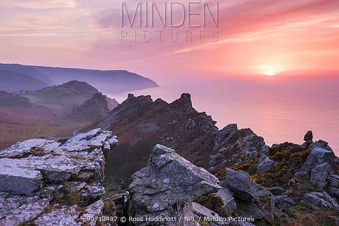 Valley of the Rocks, at sunset, Exmoor National Park, Devon, UK. April 2015.