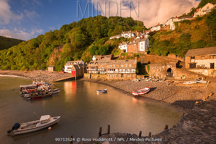 Clovelly harbour in early morning light, Clovelly, North Devon, UK. May 2015.