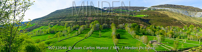 Old stone walls in a mountain landscape, Las Merindades, Burgos, Castile and Leon, Spain, May 2015.