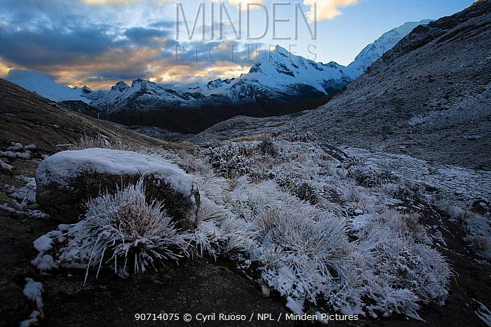 Landscape of with Mount Chopicalqui,  Cordillera Blanca Massif, Andes, Peru, November 2006.