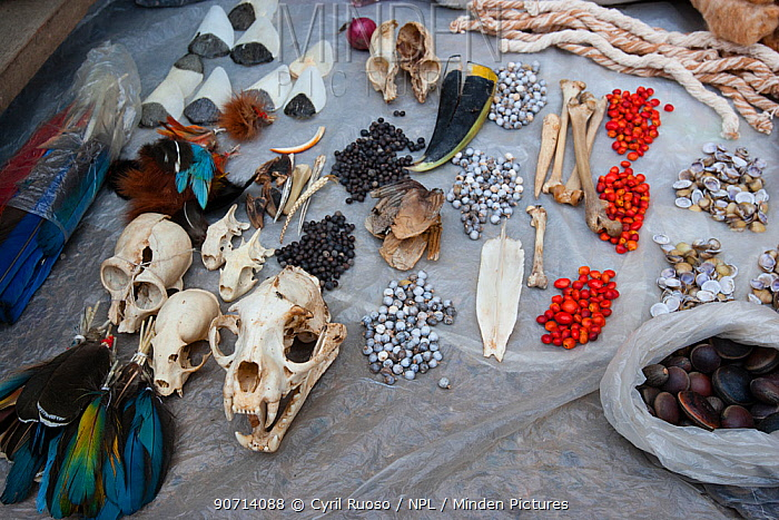 Traditional talismans, and medicines, for sale in Yurimaguas market, Amazon, Peru. November 2006.