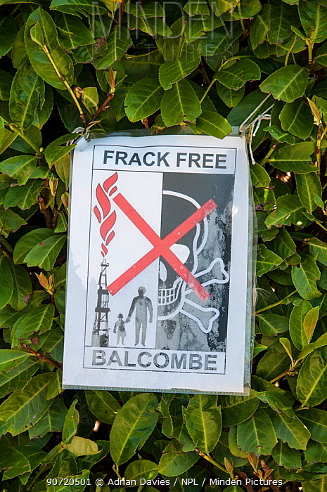 Anti-fracking protest, sign attached to hedge, Balcombe, West Sussex, England. 19th August 2013.