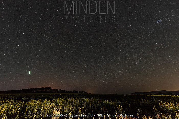 Stars facing north towards constellation Perseus with Perseid meteor shower, above farming fields in the Atherton Tablelands, Far North Queensland. August 14, 2013 4am, composite image.