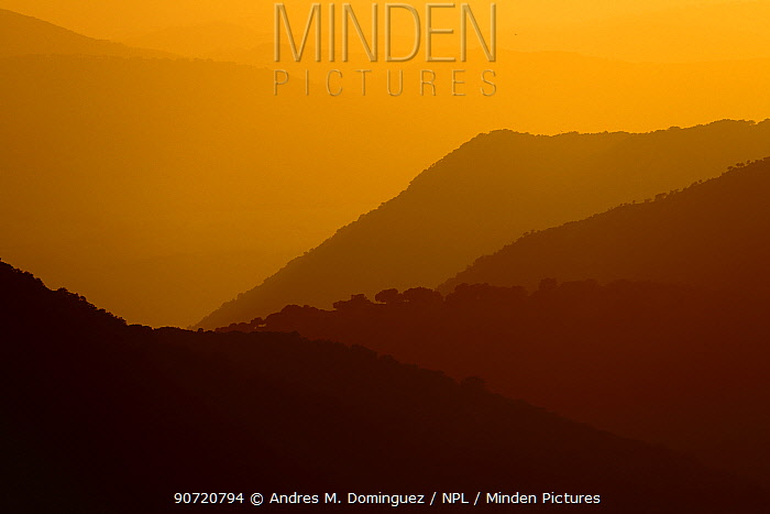 Mountain landscape silhouetted at dusk, Sierra de Grazalema Natural Park, southern Spain, March.