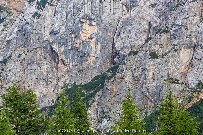 Ajdovska deklica (the Heathen Maiden), a face on the northern rock face of mount Prisojnik. Triglav National Park, Julian Alps, Slovenia. July 2015.