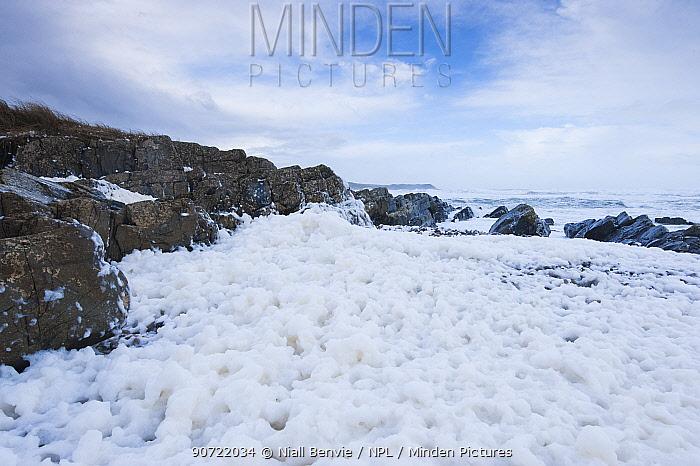 Spume on beach at Saligo Bay, Islay, Scotland, February 2014.