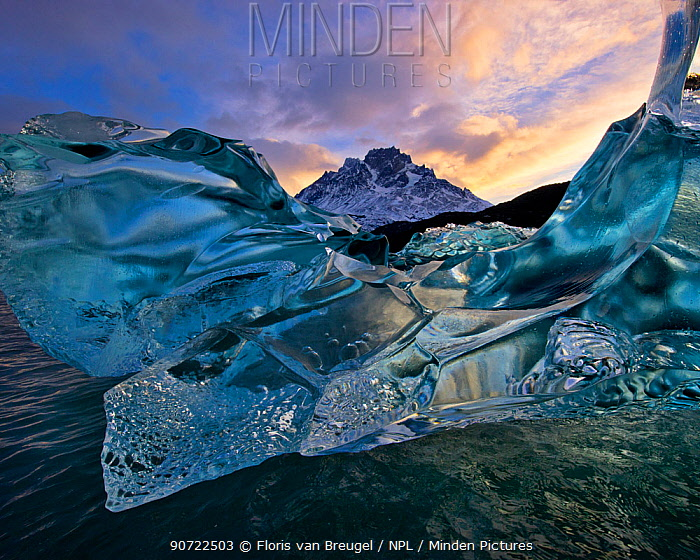 Flawless crystalline ice, produced through millennia of glacial pressure, floating on Lago Grey, Torres del Paine National Park, Chile, June 2014.