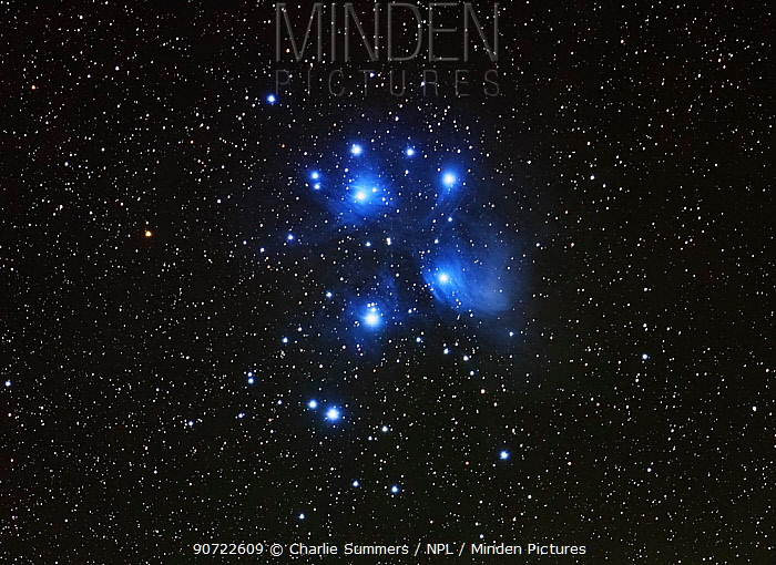 The Pleiades or Seven Sisters (M45), a star cluster in the constellation Taurus, taken 26 September 2014 from Eastern Colorado. Taken with digital focus stacking.
