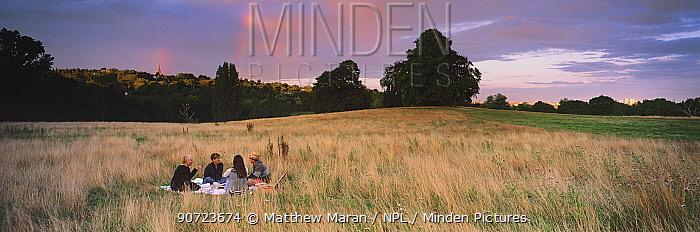 Group of people having a picnic on Hampstead Heath, London, England, UK.