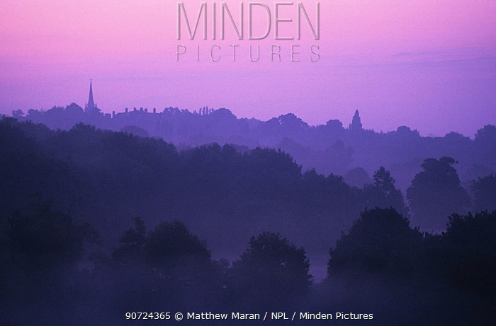 View of St Michael's Church at dawn with mist from Hampstead Heath, London, England, UK.