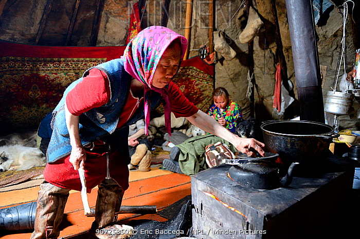 Nenet woman checking water for tea, inside tent. Yar-Sale district. Yamal, Northwest Siberia, Russia. April 2016.