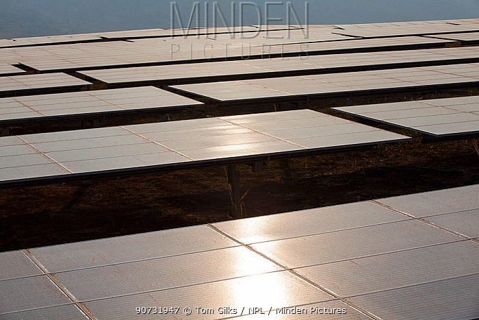 Solar panels in one of East Africa's largest Solar farms, Rwamagana District, Rwanda. July 2014.