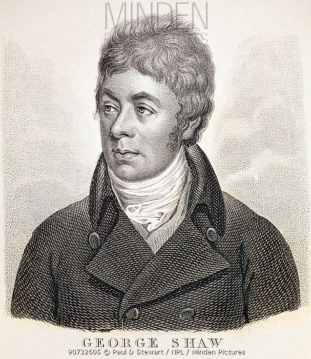 Portrait of George Shaw (175  1813)  English zoologist most famous for his illustrated encyclopaedic zoology books such as  'General Zoology'(16 vol s 18091826) and with Nodder 'The Naturalist's Miscellany'( 17891813).
