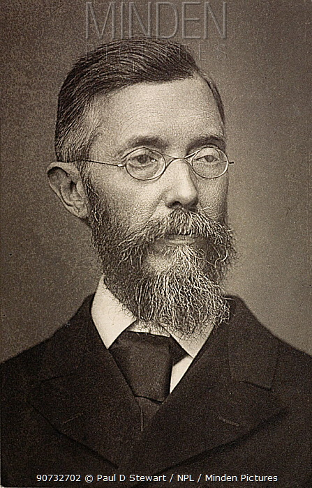 Photograph of John Thomas Gulick (March 13, 1832 - April 14, 1923)  an American missionary and naturalist from Hawaii. He performed some of the first modern evolutionary studies, starting with a collection of Hawaiian land snails.
