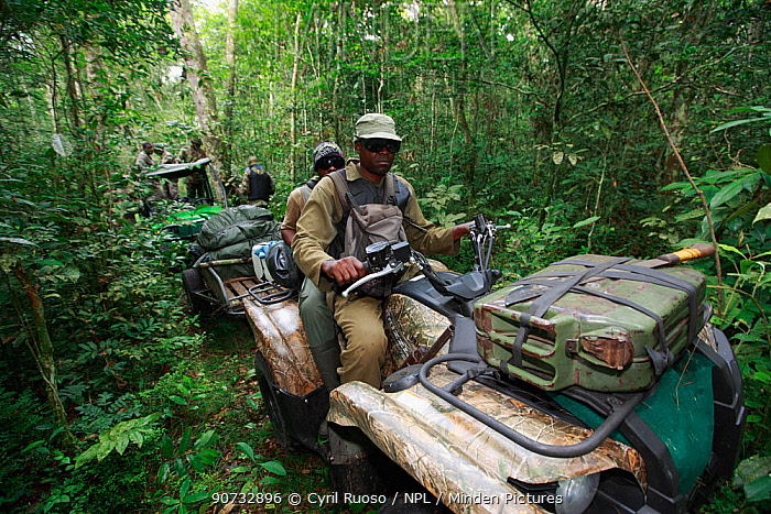 Anti-poaching patrol equipped by the Aspinal Foundation in Bateke Plateau National Park, Gabon, June 2011.