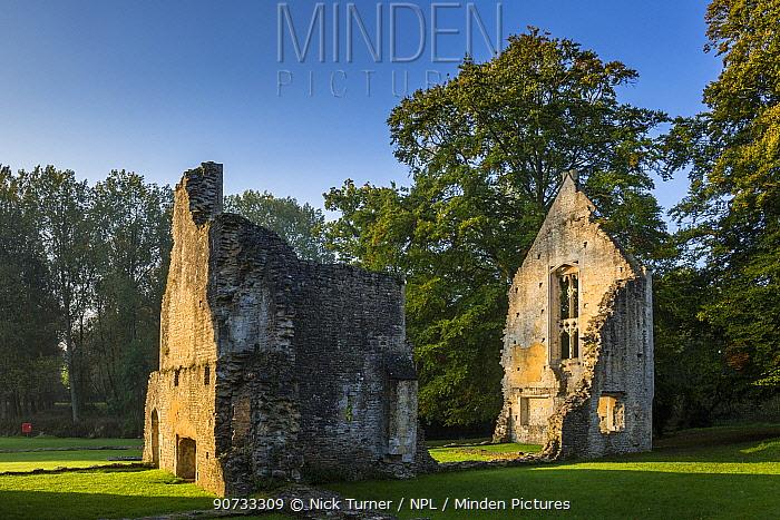 Ruin of Minster Lovell Hall, Witney, Oxfordshire, UK. October 2015.