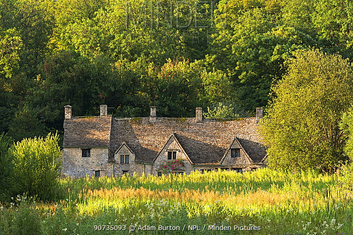 Arlington Row cottages in the Cotswold village of Bibury. Gloucestershire, England, UK. July 2014.