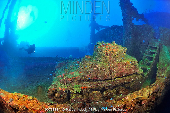 A diver above a tank laying on the deck of the wreck of the Nippo Maru, a cargo ship used as a naval auxiliary, Chuuk or Truk Lagoon, Carolines Islands, Pacific Ocean