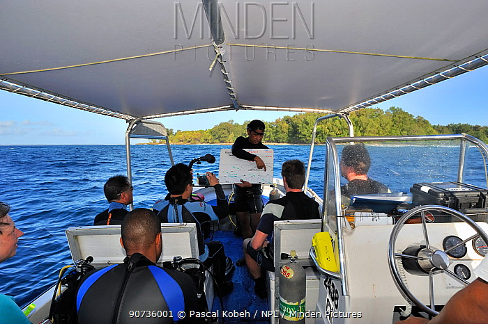 Briefing before a dive on boat, Palau, Philippine Sea
