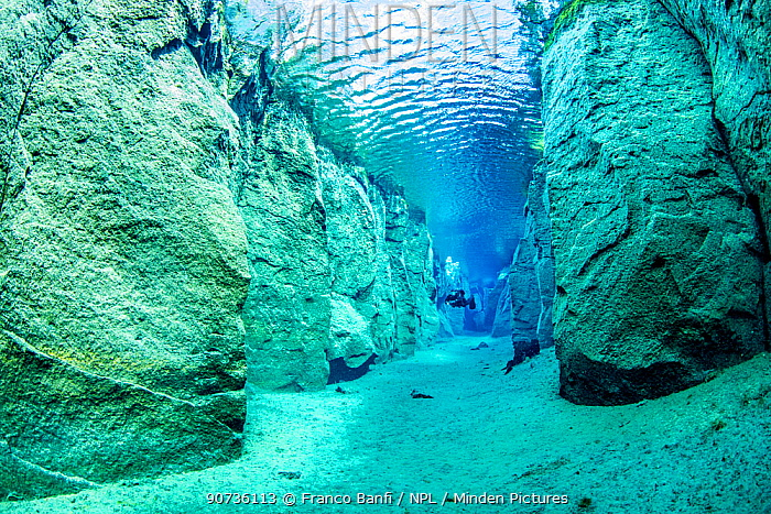 Scuba diver exploring volcanic crack Nesgja, in Asbyrgi National Park, northern Iceland