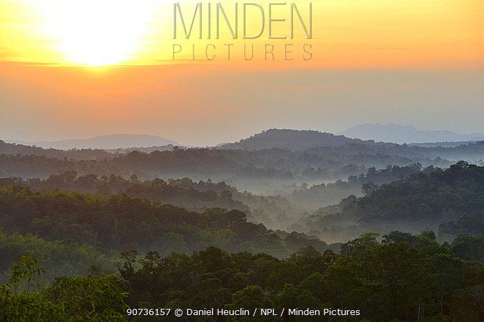 Sunrise over primary rainforest forest, Thailand, November 2014.