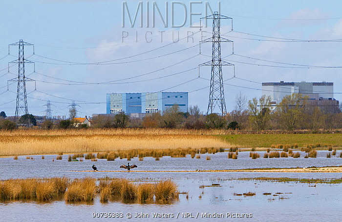 Steart Marshes, WWT reserve, flooded at high tide, with Hinkley point nuclear power station in background, Somerset, UK, April 2016.