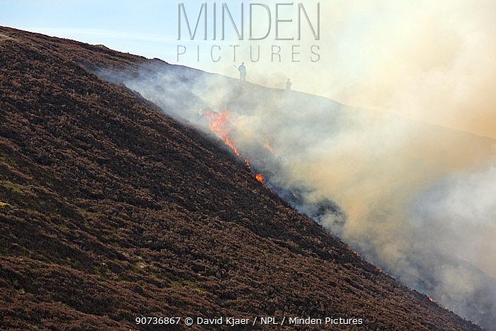 Heathr burning on Deeside, Scotland as part of Grouse Moor management.