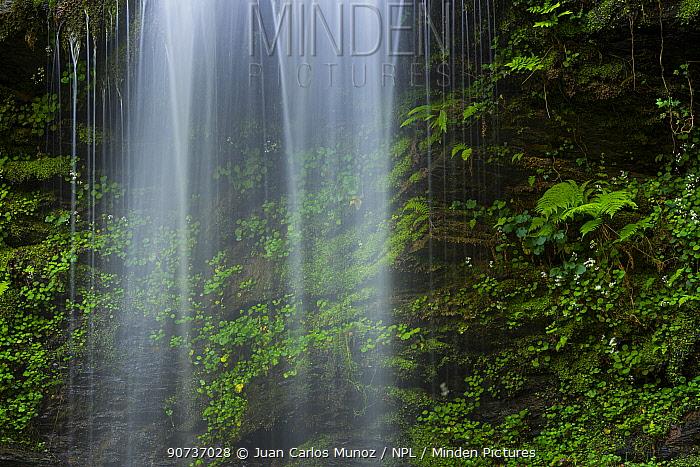 Cascade of Lamina waterfall, Lamina, Saja Besaya Natural Park, Cantabria, Spain, Europe. May 2015.