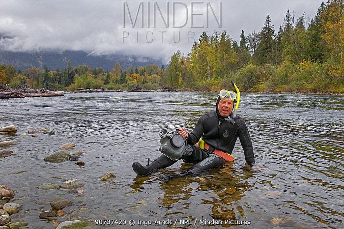 Wildlife Photographer Ingo Arndt taking underwater pictures of sockeye salmon (Oncorhynchus nerka). Adams River, Roderick Haig-Brown Provincial Park, British Columbia, Canada October.