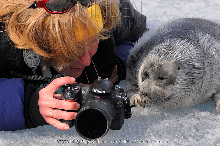Portrait of photographer Olga Kamenskaya showing Baikal seal (Phoca siberica) photos on camera. Lake Baikal, Russia. April 2009.