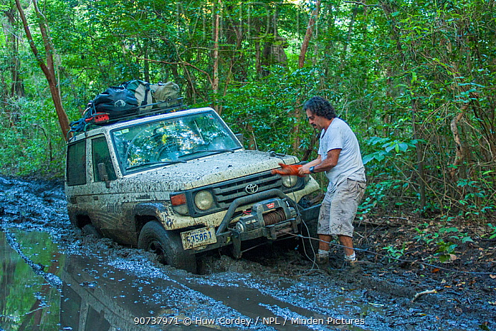 4x4 drive stuck in the mud on the track to Nancite, The driver is using a winch to pull the vehicle out of the mud. Santa Rosa National Park, Costa Rica. November 2010.